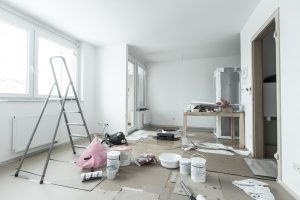 stay in the house during renovation st louis